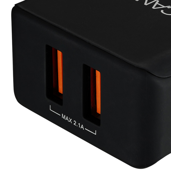 Canyon Canyon Universal 2x USB AC charger in wall
